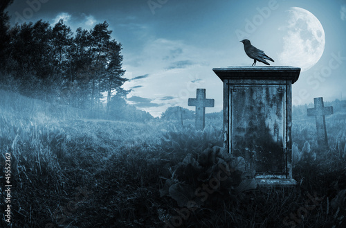 Fotobehang Begraafplaats Crow on a gravestone
