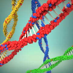 Moléculas Dna