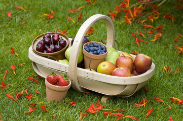 trug of summer fruit