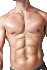 Fit torso