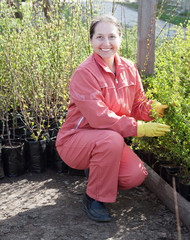 Female gardener with  sprouts