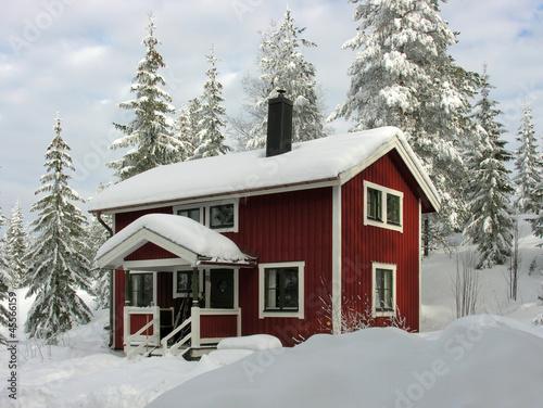 Winter in Dalarna - 45566159