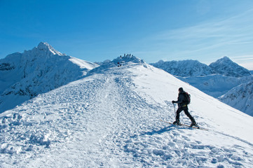 A man wandering through the mountains.