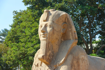 Alabaster the Sphinx is a stone sphinx of Memphis, Egypt.