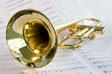 Trompete Makro