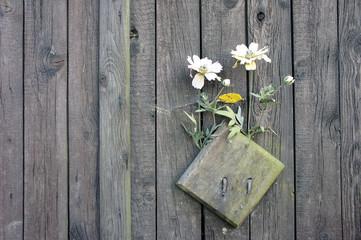 Altes Tor mit Blumenschmuck