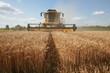 Récolte du blé :  moissoneuse jaune