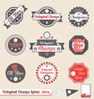 Vector Set: Retro Volleyball League Champs Labels and Stickers