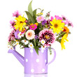 beautiful bouquet of bright flowers in watering can isolated