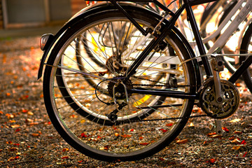 wheel of parked bike