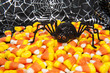 Halloween Spider with Candy Corn