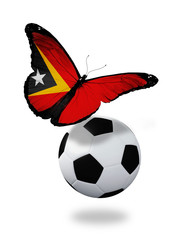 Concept - butterfly with  East Timor flag flying near the ball,
