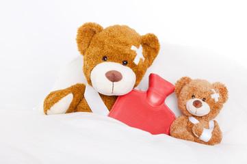 kranke bären 2