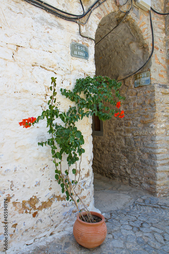 Streets of Mesta Village with flowers