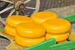 Yellow cheeses
