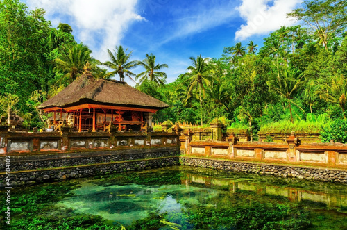 Foto op Plexiglas Indonesië Tirta Empul Temple