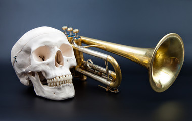 human scull and trumpet