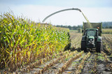 Ernte - Landwirtschaft