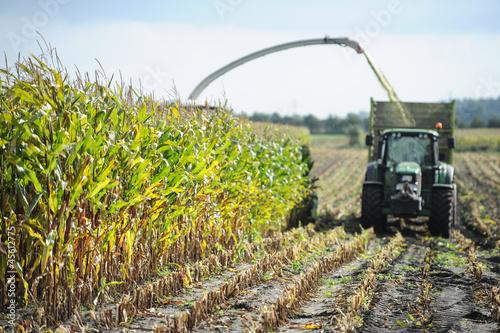 canvas print picture Ernte - Landwirtschaft