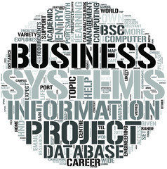 Business Information Systems DL Word Cloud Concept