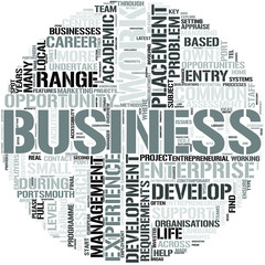 Business Enterprise Development Word Cloud Concept