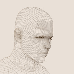 High resolution conceptual 3D wireframe man head