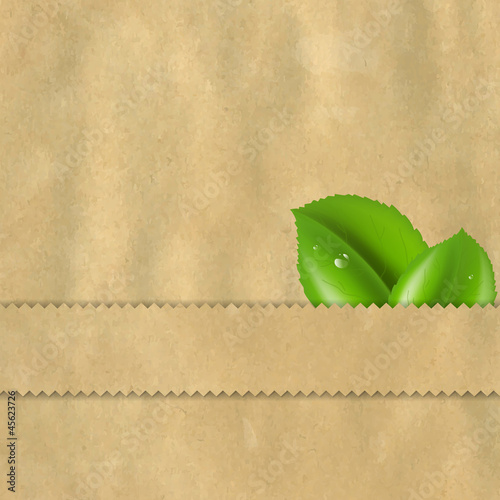 Vintage Paper With Leaves