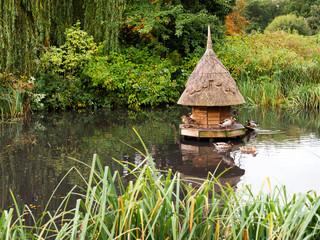 Village Duckpond