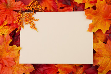 Blank card with fall leaves for your message or invitation