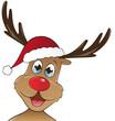 Rudolph mit Weihnachtsmütze