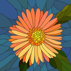 Vector illustration of flower orange aster.