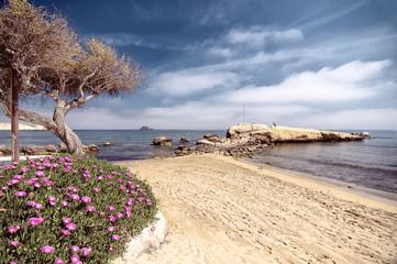 Fototapeta plaża wiosną