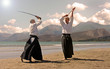 aikido in japon