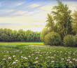 beautiful summer landscape, canvas, oil