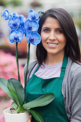 Brunette woman holding a blue flower working in garden center