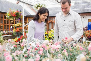 Customers choosing flowers