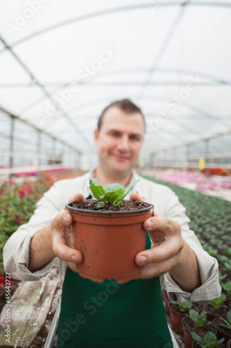 Employee holding up potted plant