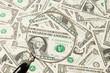 Amerikanische Dollar Geldscheine unter einer Lupe betrachtet