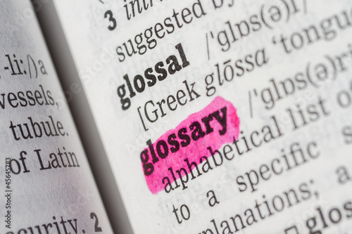 Glossary Dictionary Definition