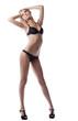 beauty blond woman posing in sexy black lingerie