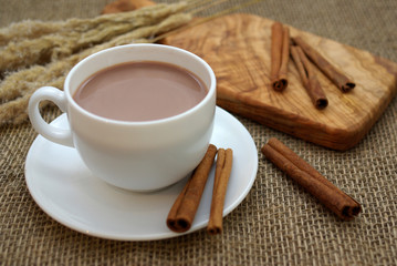 Hot chocolate and cinnamon sticks