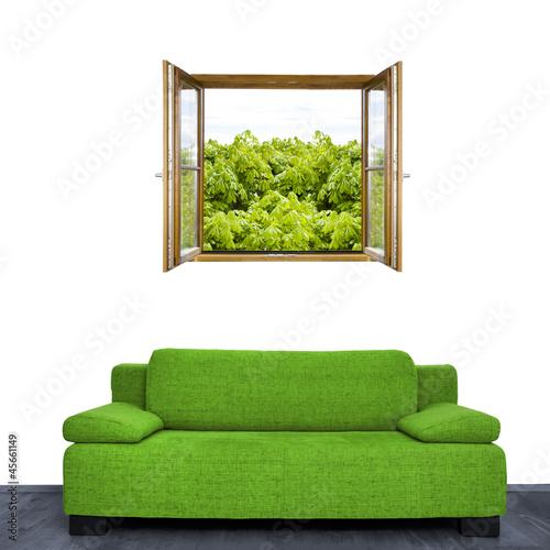 gr ne couch stockfotos und lizenzfreie bilder auf. Black Bedroom Furniture Sets. Home Design Ideas