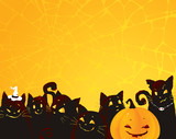 Halloween background with black cats and pumpkin.