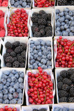 blue and red berries