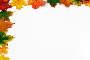 Bunter Blätterrahmen