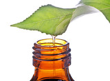 Fototapety bottle with homeopathy balm and leaf