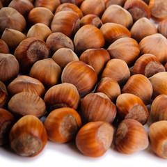 heap of hazelnuts