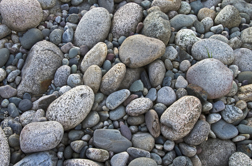 Gray pebbles.