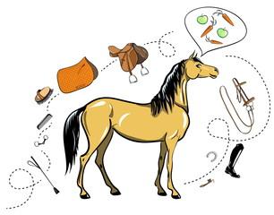 horse and tack