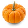 pumpkin over white background